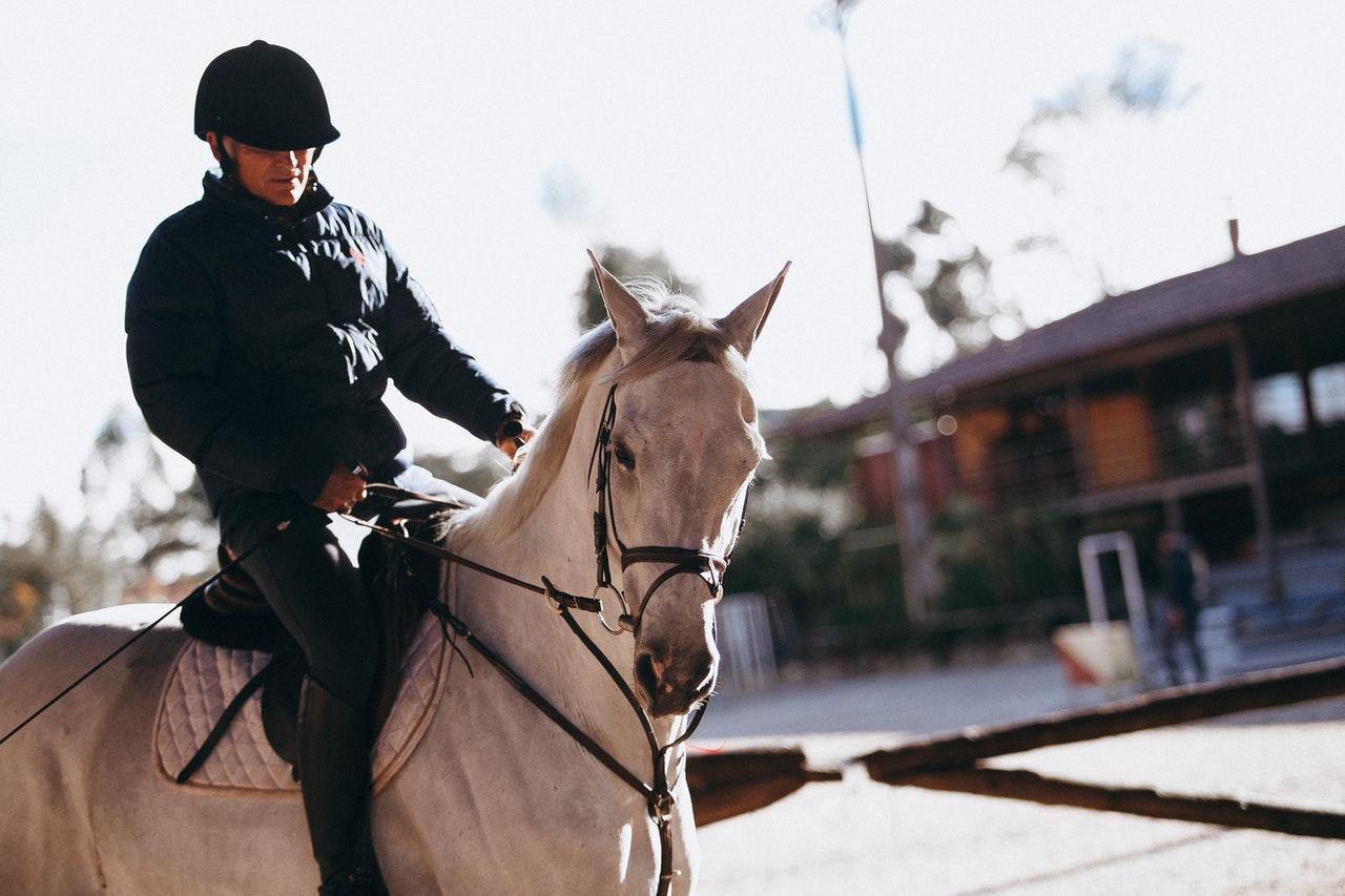 paardrijcap